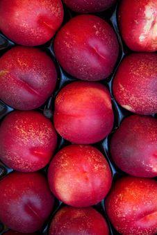 Fruit  Hybrid  Peach  Apricot Royalty Free Stock Image