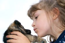 Free The Girl With A Puppy Royalty Free Stock Images - 15616579