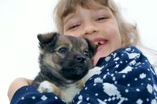 Free The Girl Holds A Puppy Stock Photography - 15616592