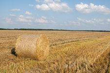 Free Golden Hay Bales Royalty Free Stock Images - 15618349