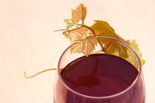 Free Red Wine With Grape Leaves Royalty Free Stock Photos - 15618368