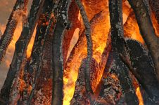 Free Bonfire. Royalty Free Stock Images - 15621009
