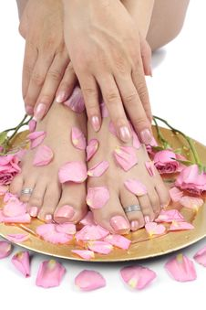 Woman  Feet With Flowers And  Petals Over White Royalty Free Stock Photography
