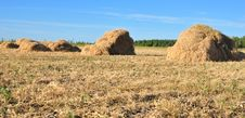 Free Haystack Stock Photo - 15624060