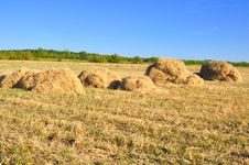 Free Haystack Royalty Free Stock Images - 15624159