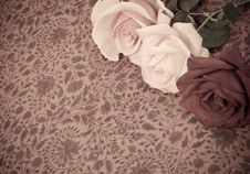 Free Rose Background Royalty Free Stock Photos - 15624828