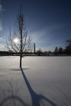 Free Washington DC Winter Stock Photography - 15625382