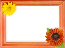 Free Frame With 2 Flowers Royalty Free Stock Photography - 15625837