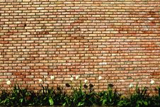 Free Brick Wall Royalty Free Stock Photo - 15627835