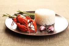 Free Boiled Lobster Royalty Free Stock Photo - 15630555