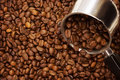 Free Coffee Beans Stock Image - 15646931