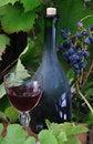 Free Red Wine Stock Image - 15648661
