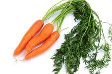 Free Three Fresh Carrots Stock Photography - 15640862