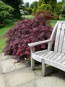 Free Bench In The Park Royalty Free Stock Image - 15642086