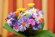 Free Bunch Of Coloured Flowers Royalty Free Stock Photos - 15643598