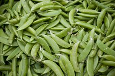 Free Green Beans Royalty Free Stock Image - 15645636