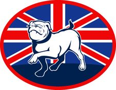Free Proud English Bulldog Flag British Stock Photo - 15648780