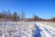 Free Snow On Field Stock Photo - 15649790