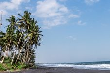 Free Landscape Of Black Sand Beach With Beautiful Palms. Bali Island. Stock Photography - 156498322
