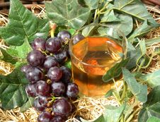 Free Grapes And  Glass Of Wine Stock Photography - 15650662