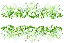 Free Floral Decoration With White Daisies Stock Images - 15653714