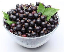 Free Crockery With Black Currant. Stock Photo - 15654430