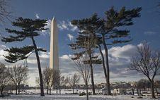 Free Washington Memorial Royalty Free Stock Photo - 15656575
