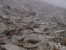 Free Trail Mountain During Bad Weather, In Fog Royalty Free Stock Photography - 15657927