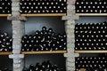 Free Vine Bottles Stock Image - 15662681