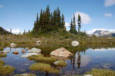 Free Whistler Mountain Royalty Free Stock Photo - 15661325