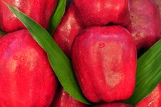 Free Close Up Apple Texture Stock Photos - 15661883