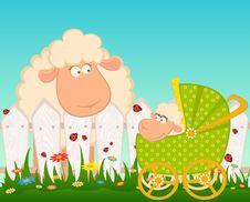 Free Cartoon Smiling Sheep Stock Photography - 15663472