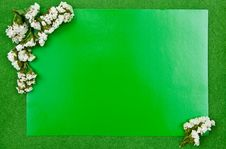 Free Green Greeting Card Stock Photo - 15663480