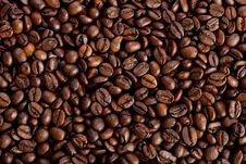 Free Coffee Beans Royalty Free Stock Photo - 15665655