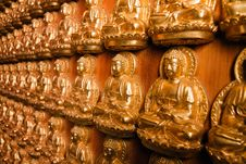 Many Golden Buddha Image Royalty Free Stock Images