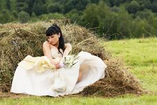 Free Beautiful Bride Stock Photos - 15667793