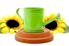 Free Watering Can With Sunflower Stock Photography - 15668652