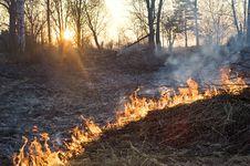 Free Burning Royalty Free Stock Image - 15669136