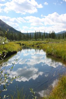 Free Sky Reflecting On Beaver Pond Stock Photo - 15669460
