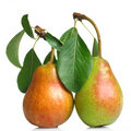 Free Red Pears With Leaves Isolated Royalty Free Stock Photos - 15674608