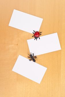 Insects And Three Blank Cards Royalty Free Stock Photo