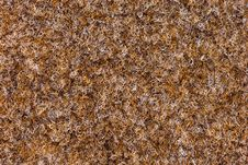 Free Texture Of Carpet Coverage Stock Photo - 15670920