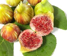 Free Figs Stock Images - 15672924