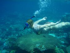 Underwater Swimmer Royalty Free Stock Images