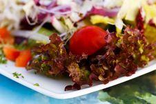Free Close Up , Fresh , Mixed Summer Salad Royalty Free Stock Photography - 15673967