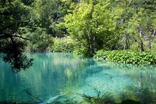 Free Plitvice Natural Park Stock Photos - 15676013