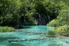Free Plitvice Natural Park Royalty Free Stock Photography - 15676037