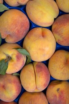Fruit  Peaches  Fresh  Ripe Stock Photography