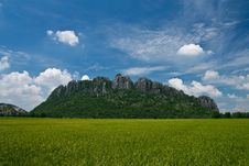 Free Rice Field In North Of Thailand Stock Images - 15678064