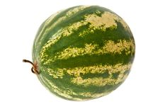 Free Watermelon Royalty Free Stock Images - 15678439